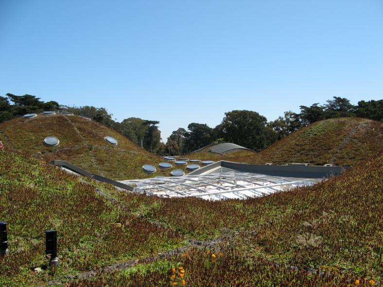 California Academy of Sciences, Golden Gate Park, San Francisco