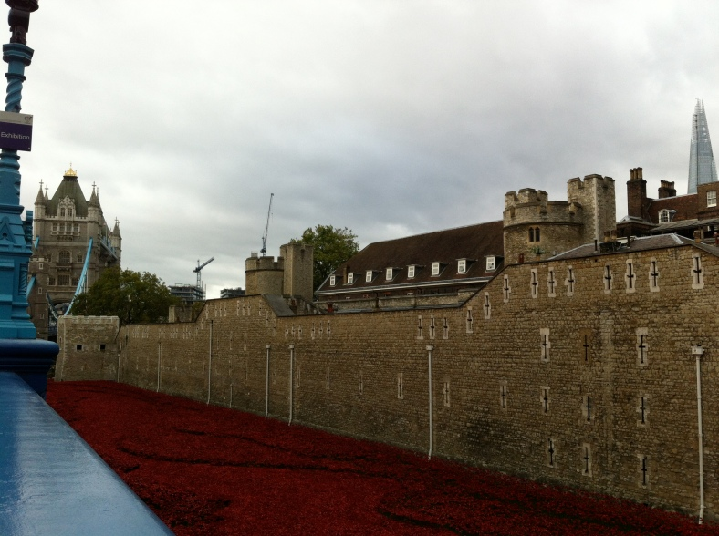 The poppies at Tower of London